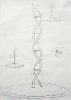 DNA Conchiglia Cattedrale  – 2003